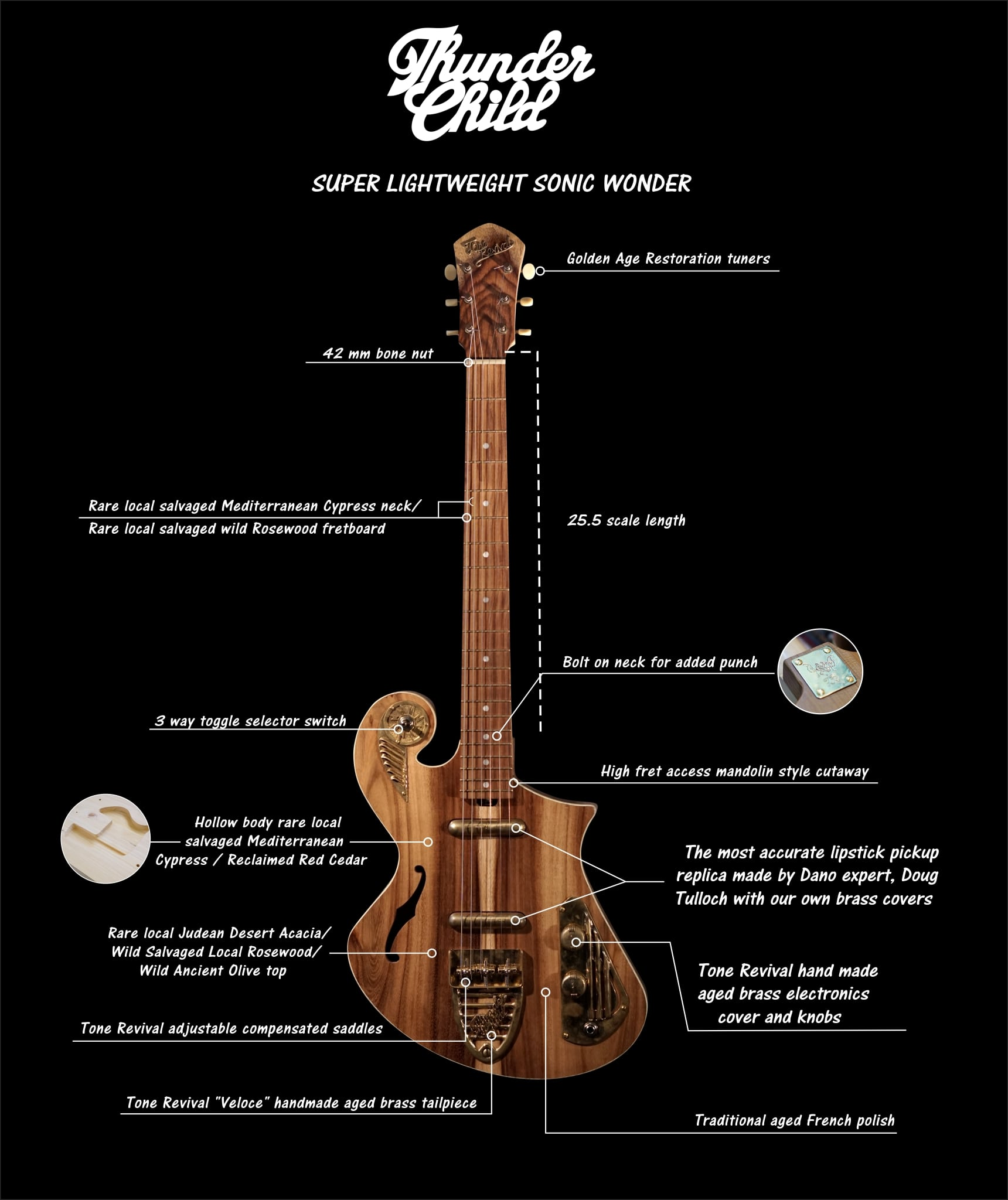 habdcrafted guitar - ThunderChild