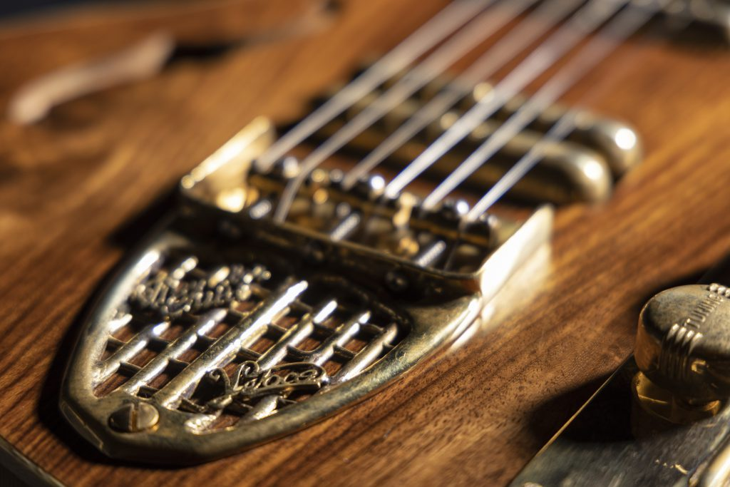 Handmade Guitar - Wild Rosewood -Thunder Child Veloce - Brass hardware