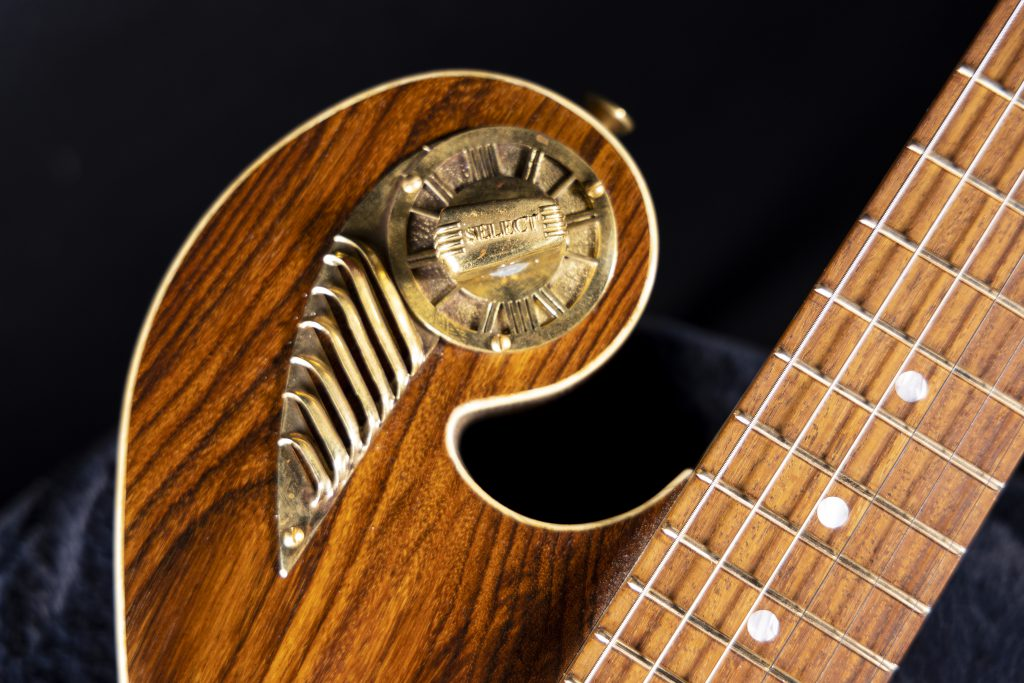Handcrafted Guitar- Wild Rosewood - Thunder Child Veloce Boutique Guitar
