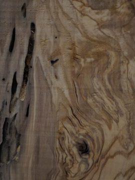 Exotic Wood Guitars-Mediterranean Olive